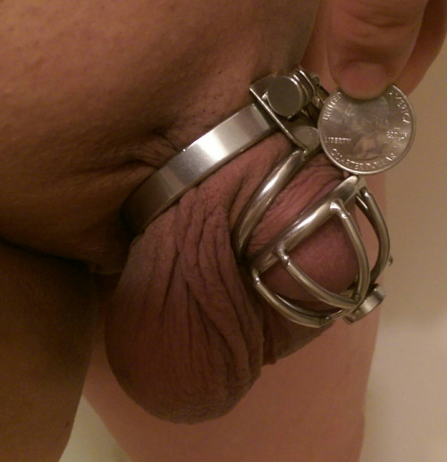 Cock is too small chastity